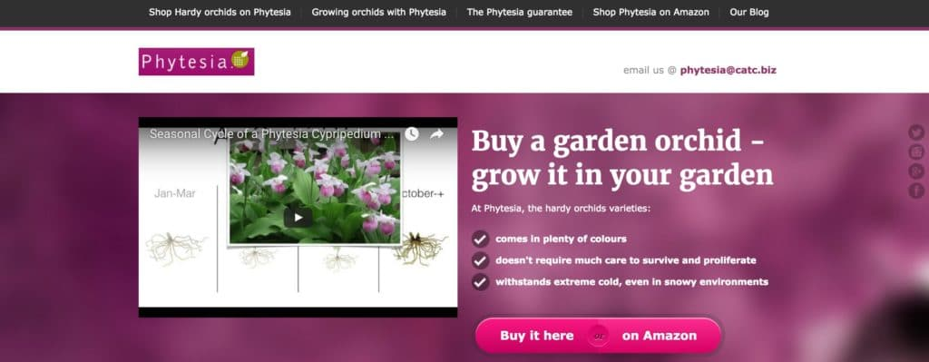 Phytesia UK - Catalog Machine Learning